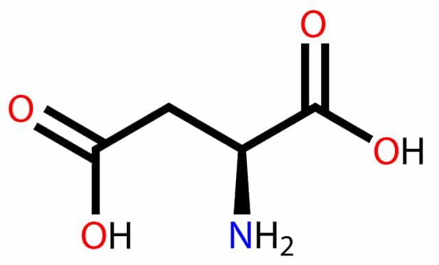 ácido Aspártico Funciones Y Beneficios De Este Aminoácido
