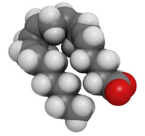 ácido araquidónico