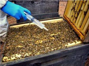 aplicaciones del ácido fórmico. apicultura