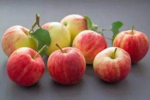 En qué alimentos se encuentra el ácido málico