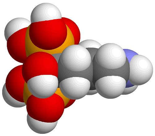 Ácido alendrónico