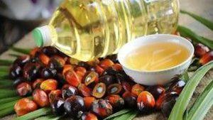 Ácido Palmítico aceite de palma